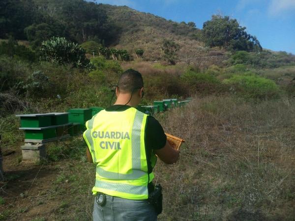 Diebstahl in El Sauzal aufgeklärt