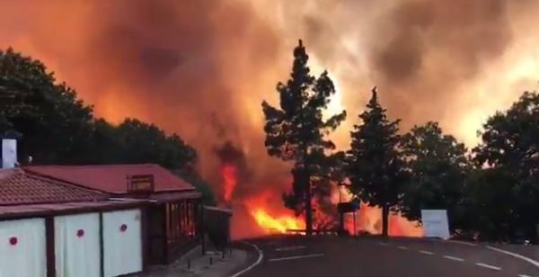 Das Feuer erreichte die Nähe der Häuser in den Bergdörfern. Für Catrin und ihre Tiere gab es leider kein Entrinnen mehr.