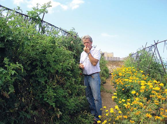 Urban Schumacher in seinem Gemüsegarten