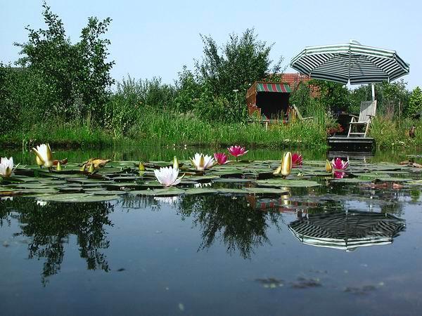 NaturaGart Deutschland GmbH & Co KG Ein großes Wasservolumen macht den Teich stabil. die Konzentration, bei der das Algenwachstum startet, wird nicht erreicht.